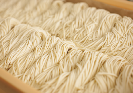 reason_noodle